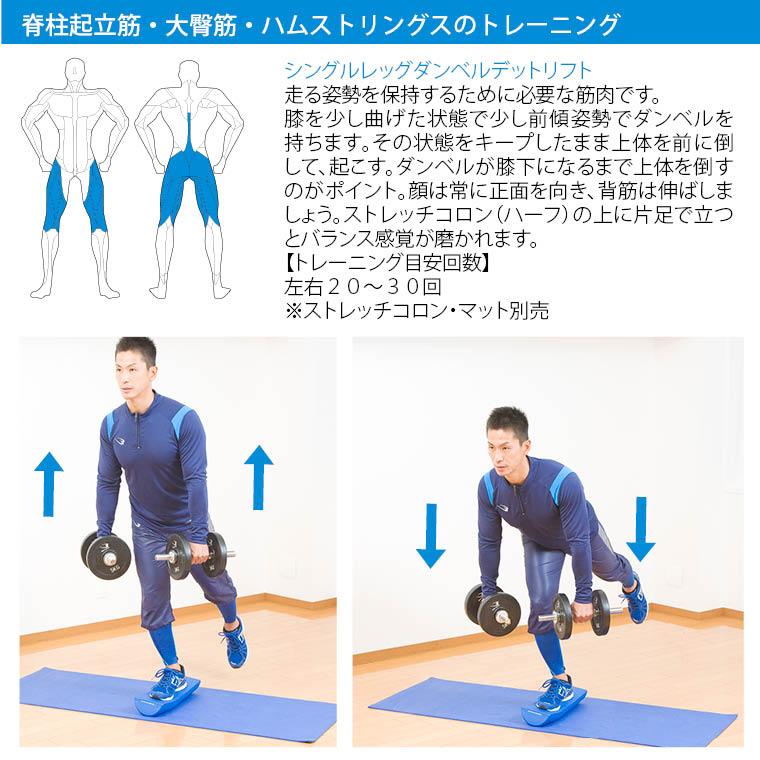 クロームダンベル(ローリングタイプ) 3kg 筋トレ トレーニング フィジカルトレーニング トレーニング例 ダンベルトレーニングメニュー 脊柱起立筋 大殿筋 鍛え方