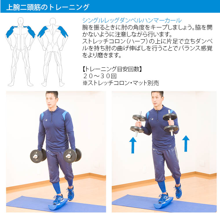クロームダンベル(ローリングタイプ) 8kg 筋トレ トレーニング フィジカルトレーニングトレーニング例 ダンベルトレーニングメニュー