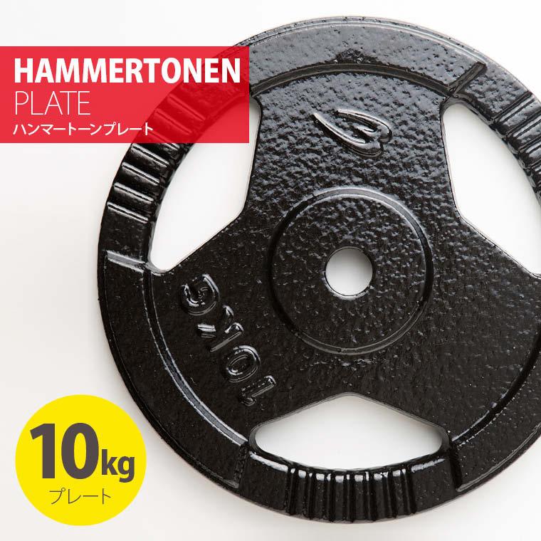 ハンマートーンプレート10kg 鉄 アイアン