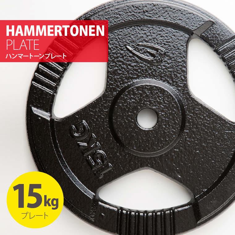 ハンマートーンプレート15kg 鉄 アイアン