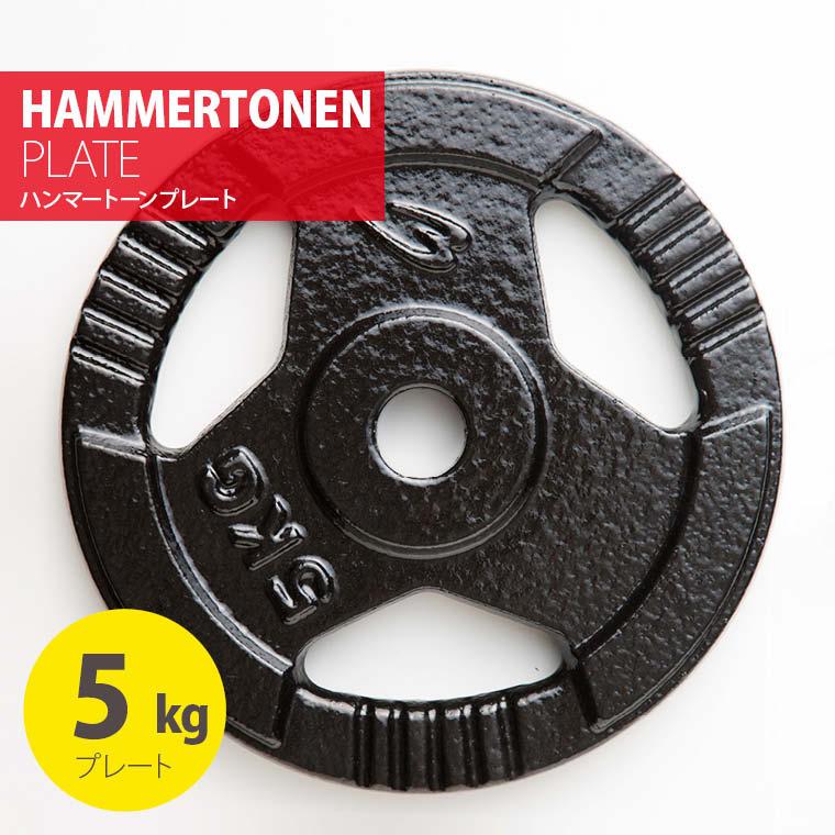 ハンマートーンプレート5kg 鉄 アイアン