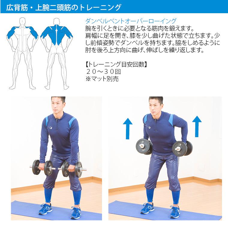 ラバーダンベルセットNR50kg トレーニング例 広背筋