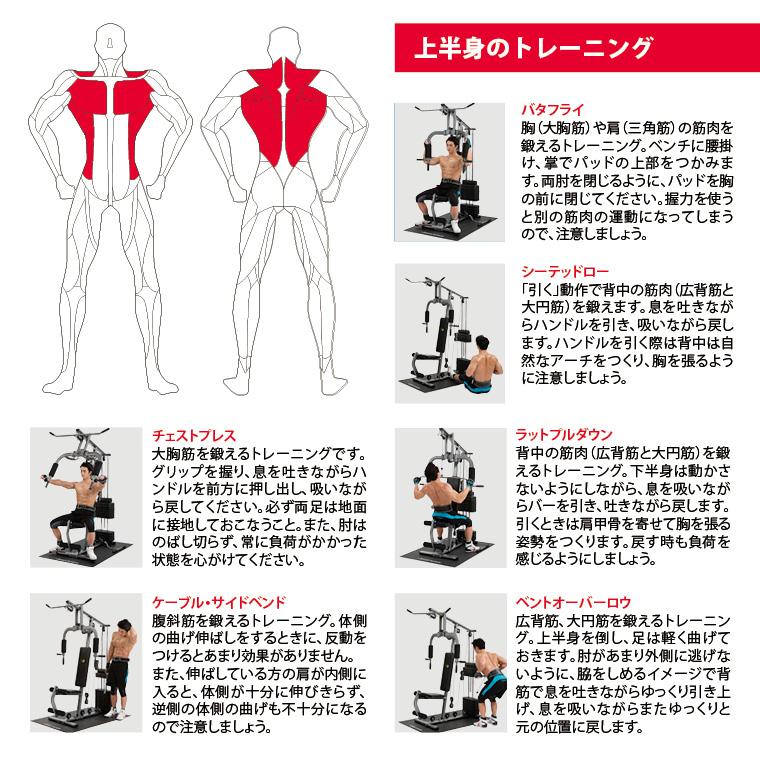 上半身のトレーニング、バタフライ胸(大胸筋)や肩(三角筋)の筋肉を鍛えるトレーニング。ベンチに腰掛け、掌でパッドの上部をつかみます。両肘を閉じるようにパッドを胸の前に閉じてください。握力を使うと別の筋肉の運動になってしまうので、注意しましょう。シーテッドロー引く動作で背中の筋肉(広背筋と大円筋)を鍛えます。息を吐きながらハンドルを引き、すいながら戻します、ハンドルを引く際は背中は自然なアーチを作り、胸を張るように注意しましょう。