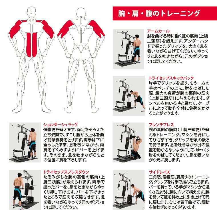 腕・肩・腹のトレーニング。アームカール、肘を曲げるときに働く腕の筋肉(上腕二頭筋)を鍛えます。アンダーハンドで握ったグリップを大きく息を吸いながら曲げてください。ゆっくりと息を吐きながら、元のポジションに戻してください。トライセップスキックバック、片手でグリップを握り、もう一方の手はベンチの上に。肘を伸ばした際、最大の負荷がの裏側の筋肉(上腕三頭筋)に与えられます。ダンベルを用いるときと異なり、ケーブルによって動作全体に負荷をかけることができます