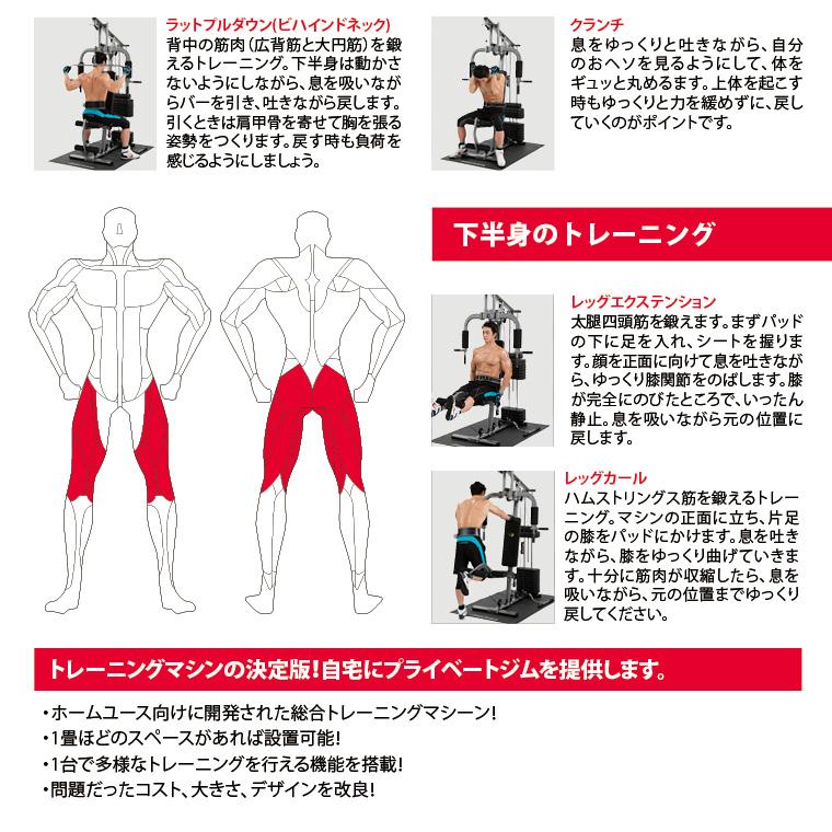 下半身のトレーニング。レッグエクステンション、大腿四頭筋を鍛えます、まずパッドの下に足を入れ、シートを握ります。顔を正面に向けて息を吐きながら、ゆっくり膝関節を伸ばします。膝が完全に伸びたところで、いったん静止。息を吸いながら元の位置に戻します。レッグカール、ハムストリングス筋を鍛えるトレーニング。マシンの正面に立ち、片足の膝をパッドにかけます。息を吐きながら膝をゆっくり曲げていきます。十分に筋肉が収縮したら、息を吸いながら、元の位置までゆっくり戻してください。